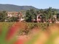 L'Hôtel Restaurant Le Mas du Lingousto est situé au cœur du vignoble varois